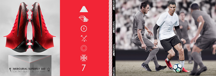cr7Chapter7
