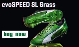 PumaEvoSpeedSLgrass3d